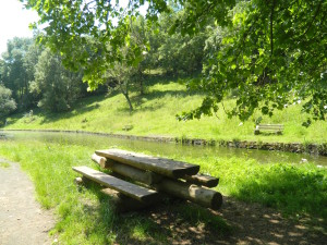 Sitzbank am Teich