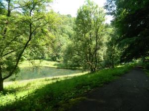 Der Brunnental Teich.